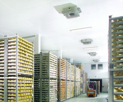 plafond de fromagerie rénové en dalles pvc alimentaires