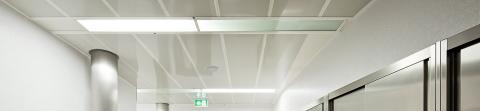 plafond en lames pvc alimentaire